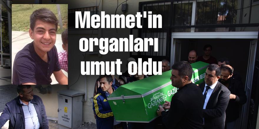 Mehmet'in organları umut oldu