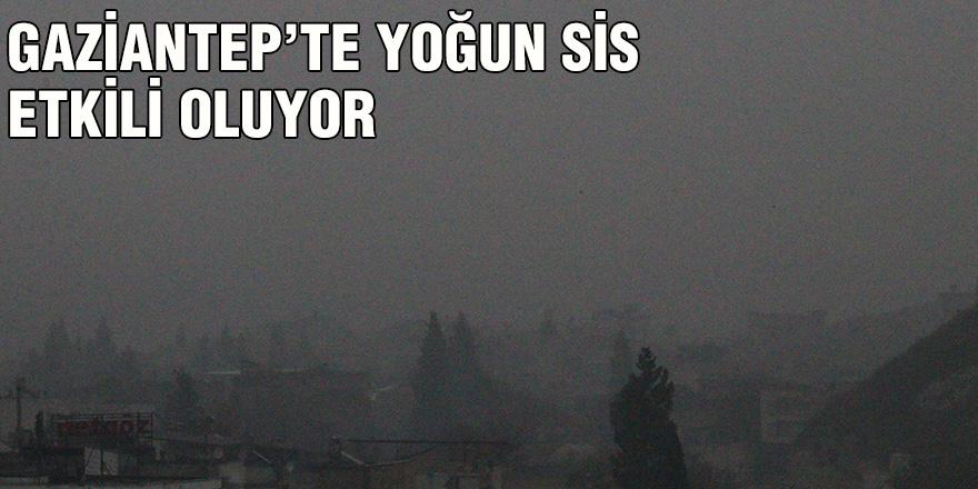 Gaziantep'te yoğun sis etkili oluyor