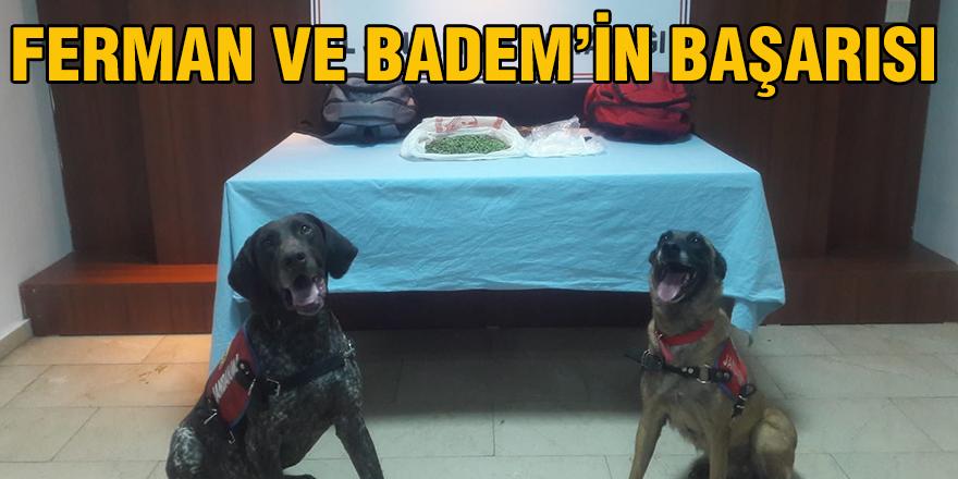 Ferman ve Badem'in başarısı
