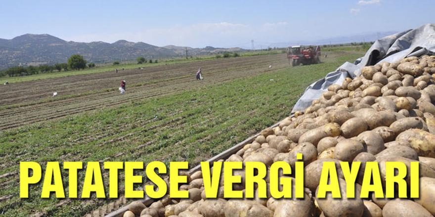Patateste gümrük vergisi sıfırlandı