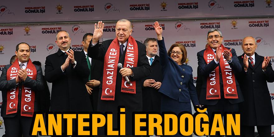 Antepli Erdoğan