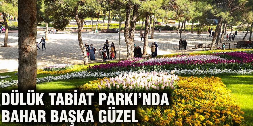 Dülük Tabiat Parkı'nda bahar başka güzel