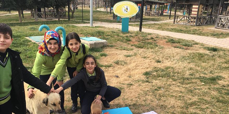 Öğrencilerden hayvanlara destek