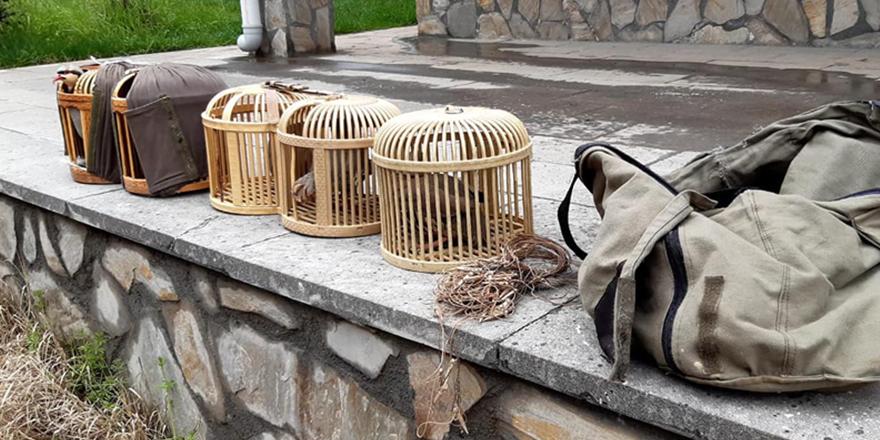 Keklik avladılar, cezayı yediler