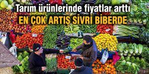Tarım ürünlerinde fiyatlar arttı