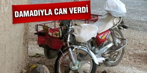 DAMADIYLA CAN VERDİ