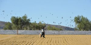 Rızkını kuşların peşinde arıyor