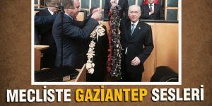 MECLİSTE GAZİANTEP SESLERİ