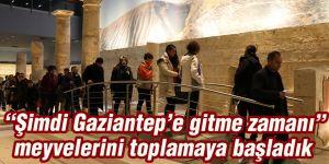 """""""Şimdi Gaziantep'e gitme zamanı"""" meyvelerini toplamaya başladık"""