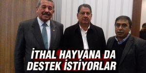 İTHAL HAYVANA DA DESTEK İSTİYORLAR