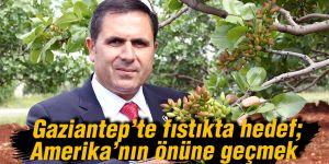 Gaziantep'te fıstıkta hedef; Amerika'nın önüne geçmek