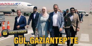 Gül, Gaziantep'te