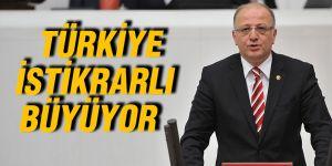 Türkiye istikrarlı büyüyor