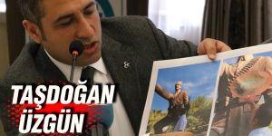 Taşdoğan üzgün