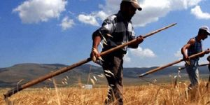 Çiftçi tarımsal destekle nefes alacak
