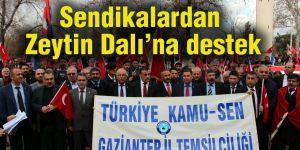 Sendikalardan Zeytin Dalı'na destek