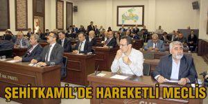 Şehitkamil'de hareketli meclis