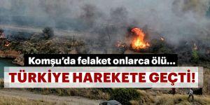 Yunanistan'da orman yangını!