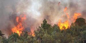 Nurdağı'nda 15. Dönüm orman kül oldu