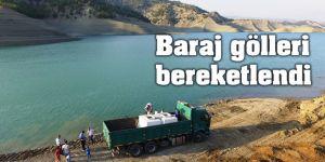 Baraj gölleri bereketlendi