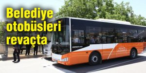 Belediye  otobüsleri revaçta