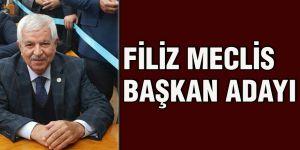 Filiz meclis başkan adayı