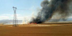 Buğday ekili arazide yandı