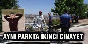 AYNI PARKTA İKİNCİ CİNAYET
