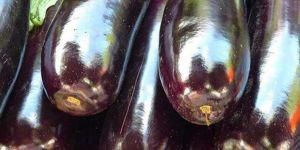 Deri hastalıklarına 'patlıcanlı' çözüm