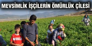 Mevsimlik işçilerin ömürlük çilesi