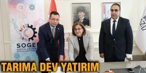 TARIMA DEV YATIRIM