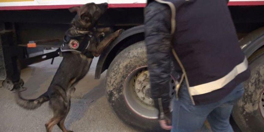 Gaziantep'te 13 bin 500 paket gümrük kaçağı sigara ele geçirildi