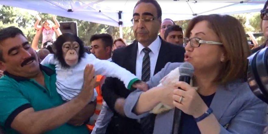 Fatma Şahin, maymun Can'ın hışmına uğradı