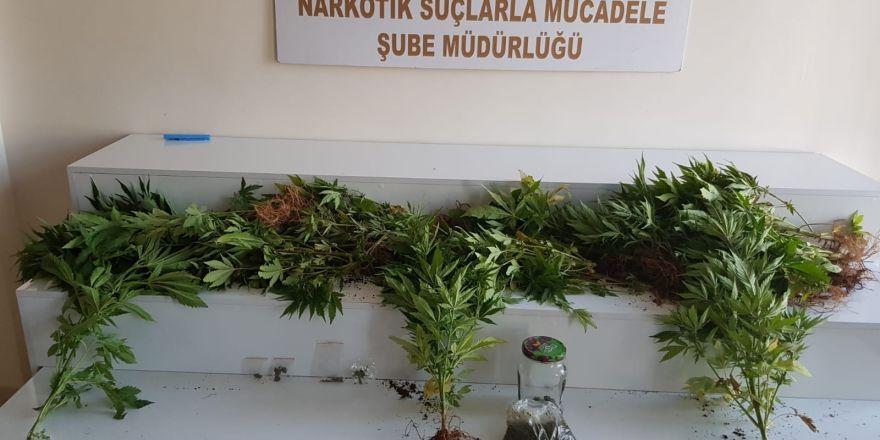 Eve yapılan baskında uyuşturucu ele geçirildi