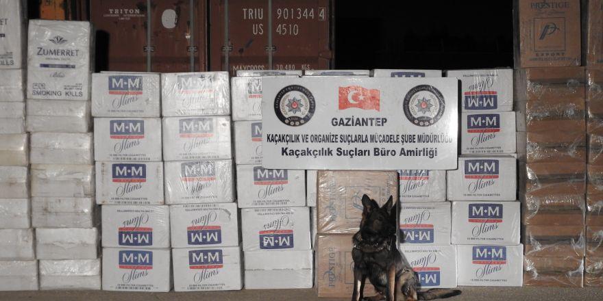 Gaziantep'te 101 bin paket gümrük kaçağı sigara ele geçirildi
